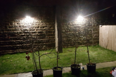 Outdoor-Lighting-3
